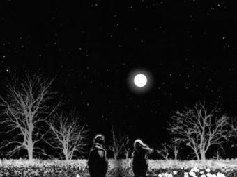 Ay'ı sordum yıldızlara